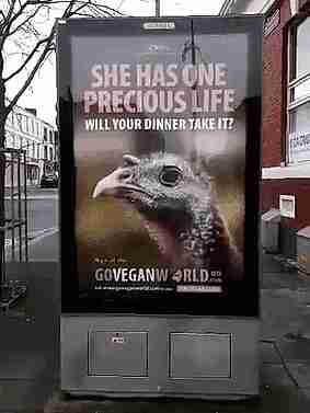 publicidad con fallo en diseño