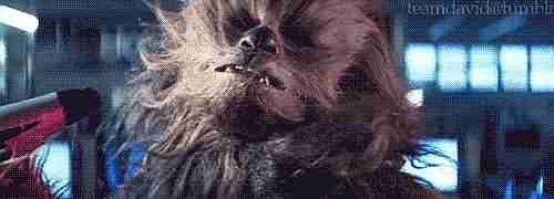 Chewbacca con secador de cabello.