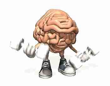 Cerebro entrenando