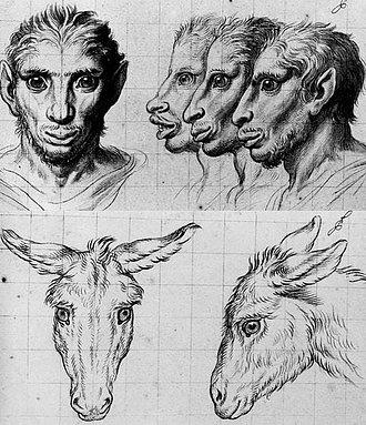 evolución del humano por Charles Le Brun
