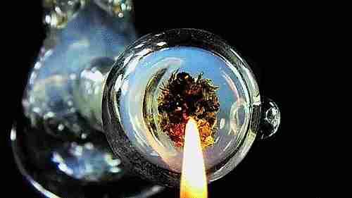 marihuana fumar