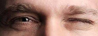 ojo cerrado ojo abierto